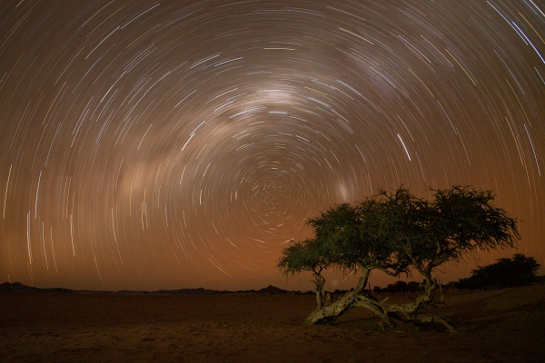 Witgat Startrail